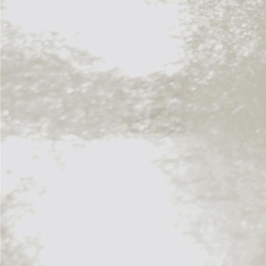 Polipropilene trasparente lucido